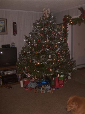 christmas1-custom-2.jpg